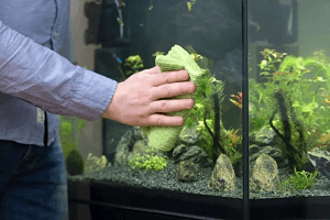 Starostlivosť o akvárium filter vodu rastliny