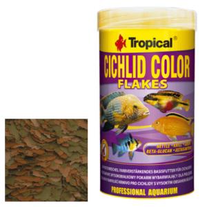 Tropical CICHLID COLOR
