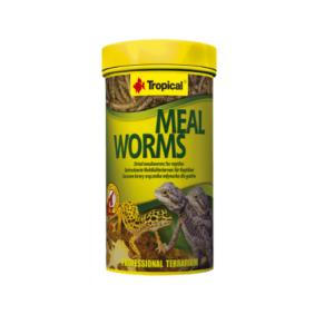 Tropical MEAL WORMS (sušené múčne červy)
